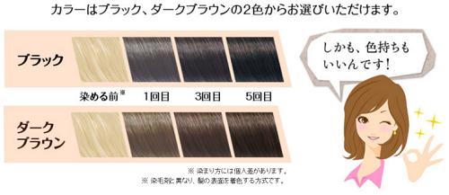 玉髪の染まり方のイメージ画像
