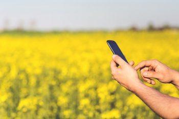 LINEに見る好きサインをイメージした携帯を持つ女性の画像。好きな人から脈ありサインが出ているか気になる。